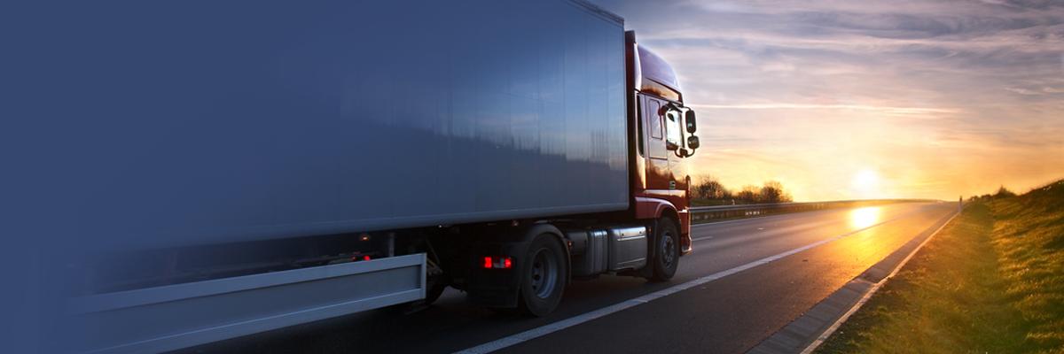Warum ein digitale Wareneingang in SAP