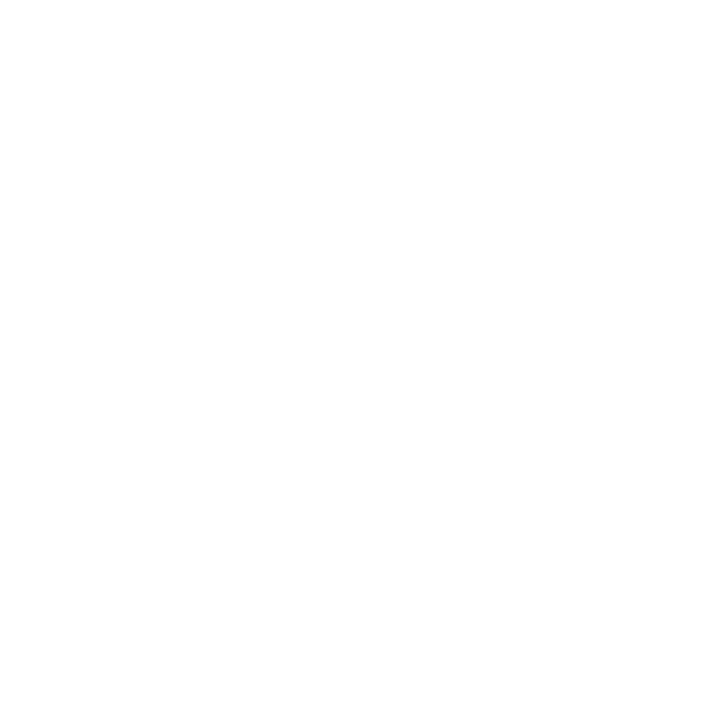 Netz-Icon in der Farbe weiß